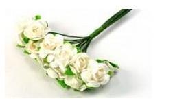 Cvetje in šopki