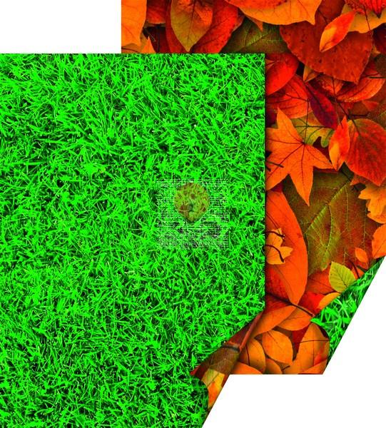 """Karton z naravnimi motivi """"Trava in suho listje,"""" 50 x 70 cm, 300 g/m2, 1 kos"""