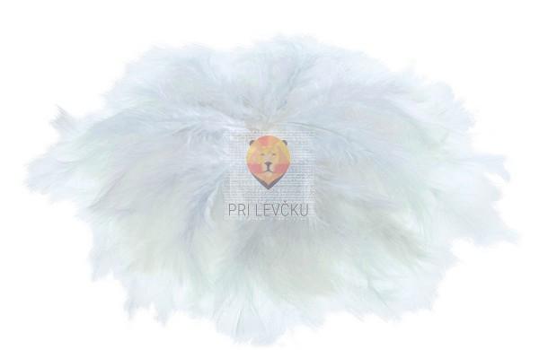 Perje bele barve 100 gramov