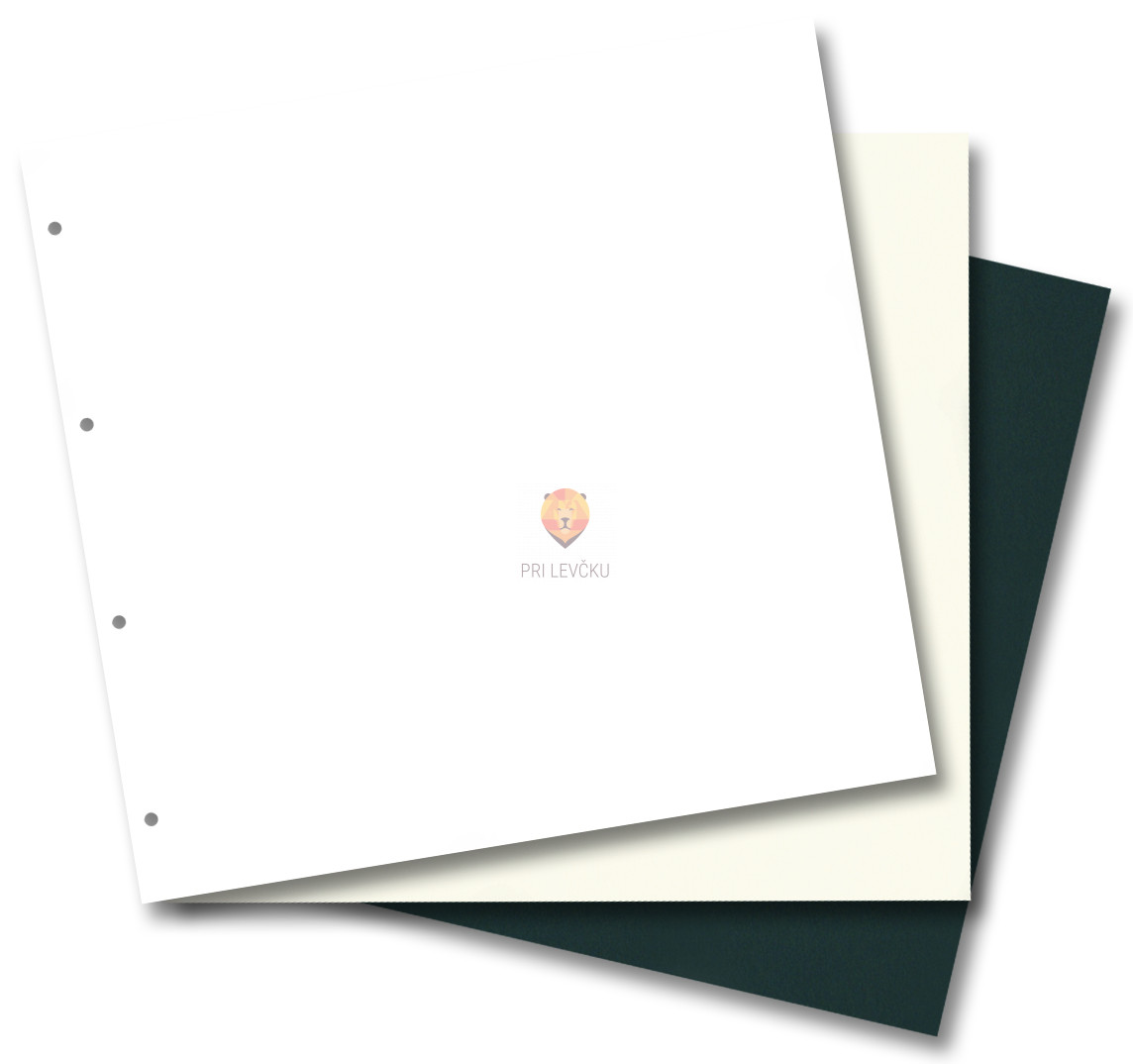 Vložni kartoni za scrapbook mape veliki 15 kos