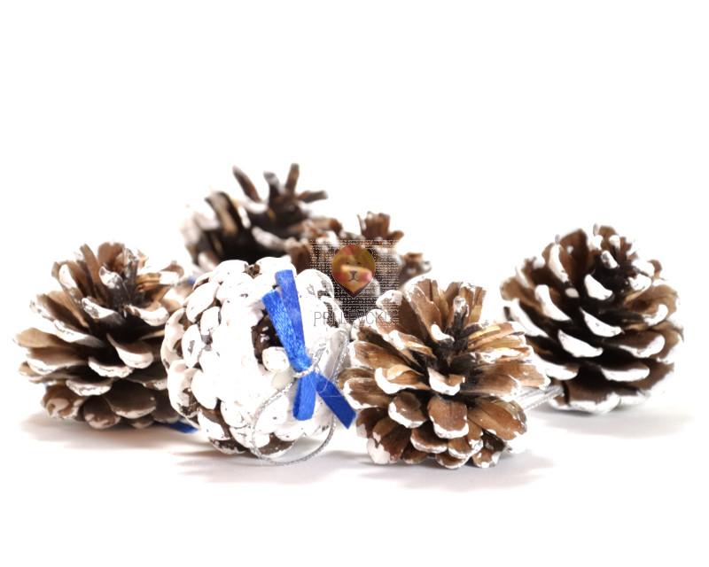 Storži s snegom 6 kosov