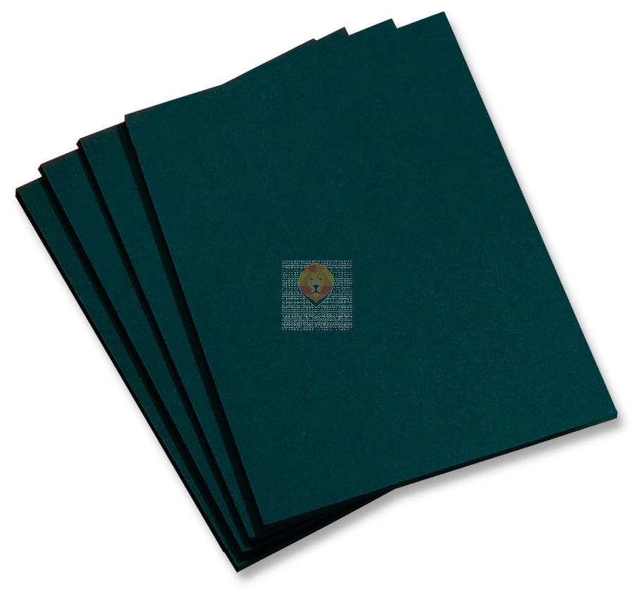 Fotokarton črn visoke kvalitete 50x70cm 380g/m2 1 kos