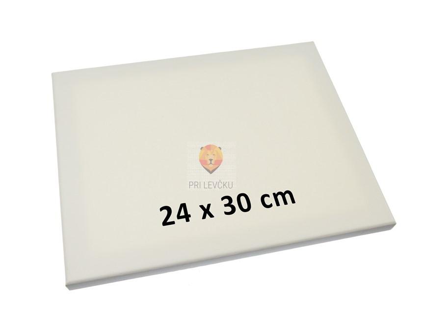 Platno slikarsko klasično 300g 24x30cm