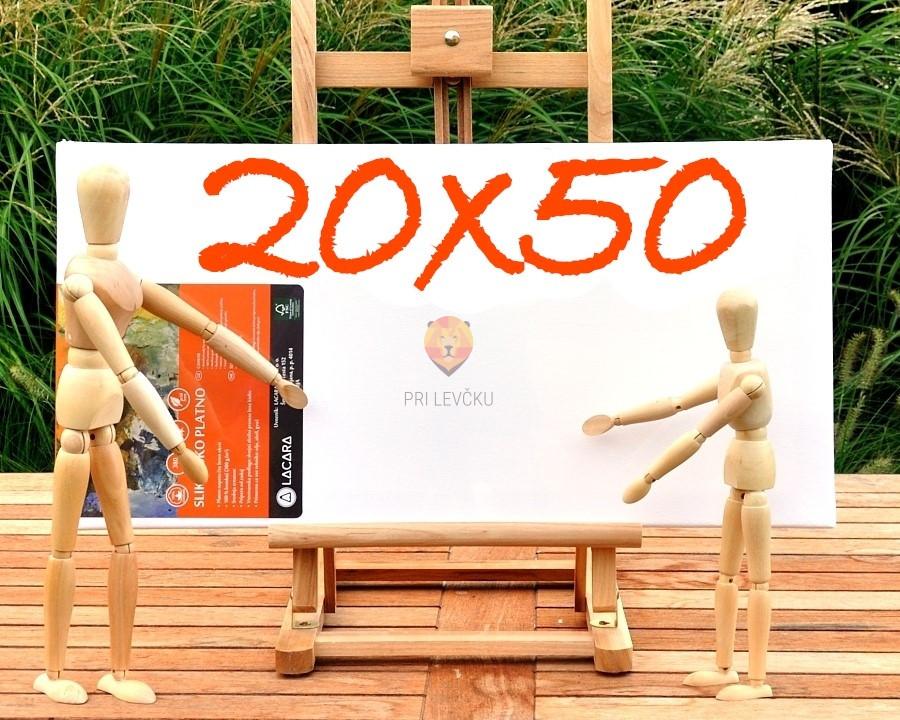 Platno slikarsko 20x50cm 300g/m2 1 kos