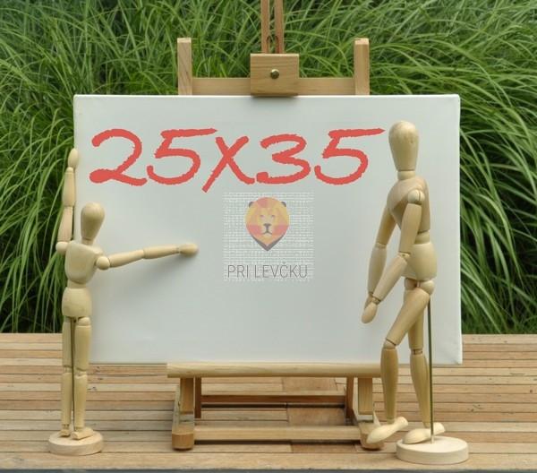 Platno slikarsko 25x35cm 380g/m2 1 kos