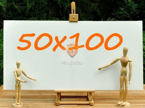 Platno slikarsko 50x100cm 380g/m2 1 kos