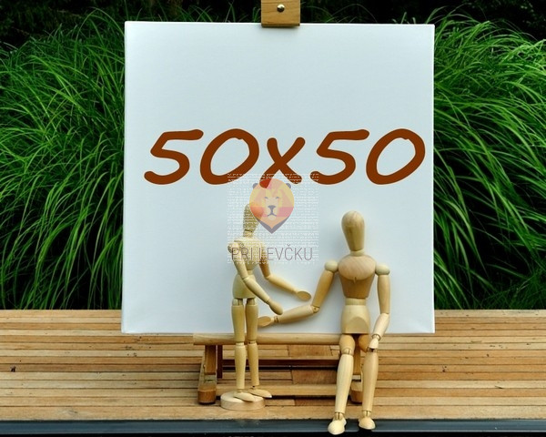 Platno slikarsko 50x50cm 300g/m2 1 kos