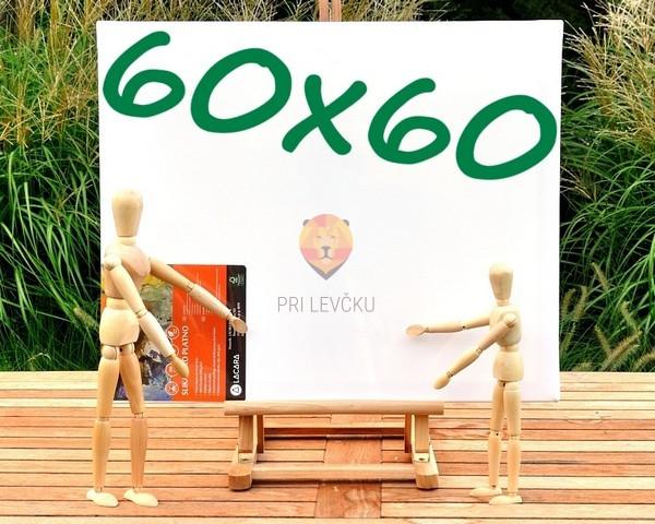 Platno slikarsko 60x60cm 380g/m2 1 kos