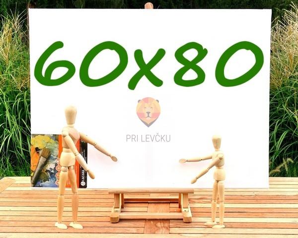 Platno slikarsko 60x80cm 380g/m2 1 kos