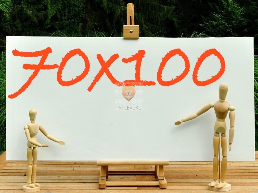 Platno slikarsko 70x100cm 300g/m2 1 kos