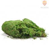 Posušen zelen mah 70g