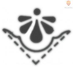 Kotni luknjač - Školjka