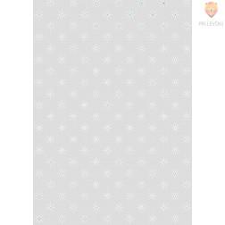 Transparentni papir Hologramska zvezda 21x31cm