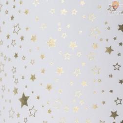 Transparentni papir s svetlečim potiskom Zvezdice zlate 50x70cm 1 kos