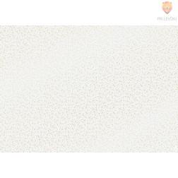 Transparentni papir Omela s svetlečo folijo 50x70cm 115g/m2 1 kos