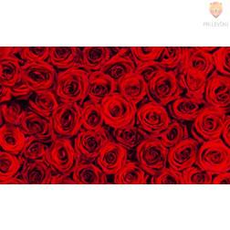 Karton z motivi Vrtnice 270g/m2 50x70cm 1 kos