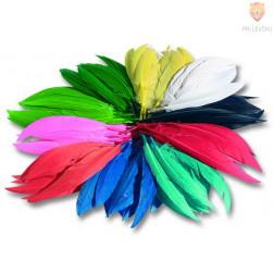 Indijansko perje barvni miks 100g