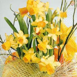 Prtički za servietno tehniko Narcise 20 kosov