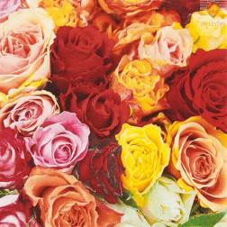 Prtički za servietno tehniko Vrtnice rumene in rdeče 20 kosov