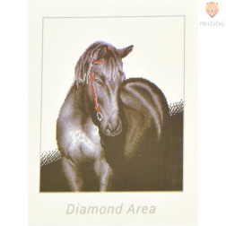 Diamond Dotz veliki set Midnight Stallion