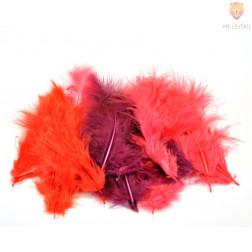 Barvno perje 20 kosov Rdeči miks