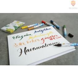 Akvarelni flomastri Aqua Paint Marker topli odtenki 6 kosov