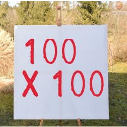 Platno slikarsko 100x100cm 300g/m2 1 kos