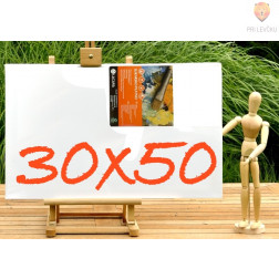 Platno slikarsko 30x50cm 380g/m2 1 kos