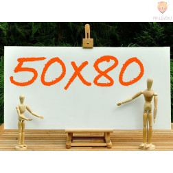 Platno slikarsko 50x80cm 380 g/m2 1 kos