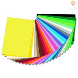 Barvni karton tonkarton A4 220g/m2 1 kos