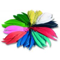 Indijansko perje, barvni miks, 100 gramov
