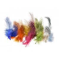 Barvno perje pikasto, barvni miks, 20 kosov