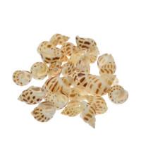 Školjke z luknjico, polžki, 30 g