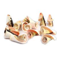 Školjke z luknjico - ravne, 60 g